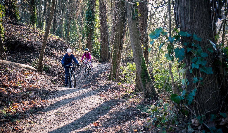 Singletrack trail at Gateway Green in Portland, Oregon.