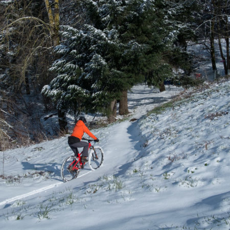 image for Portland Snow Day at Gateway Green Park