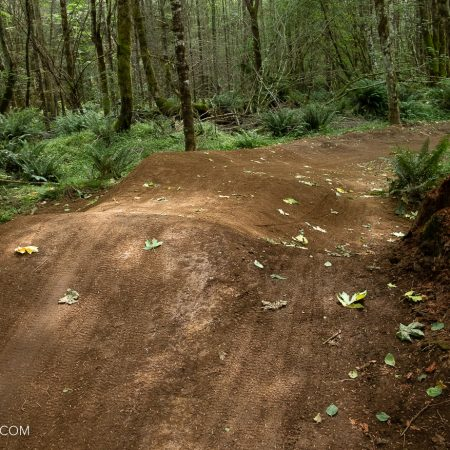 image for Trail Report: 2020 Sandy Ridge Trail Maintenance Updates